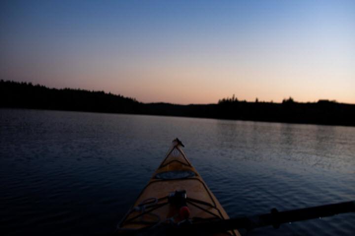Night-Time Kayaking Trips